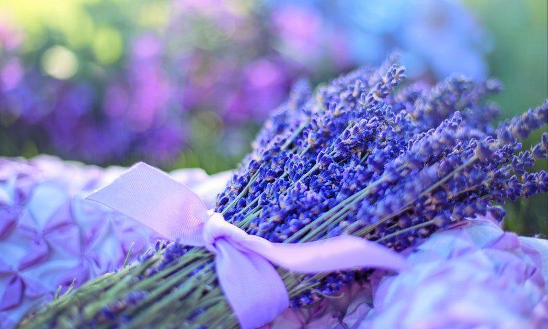 lavendelolie haargroei luizen roos