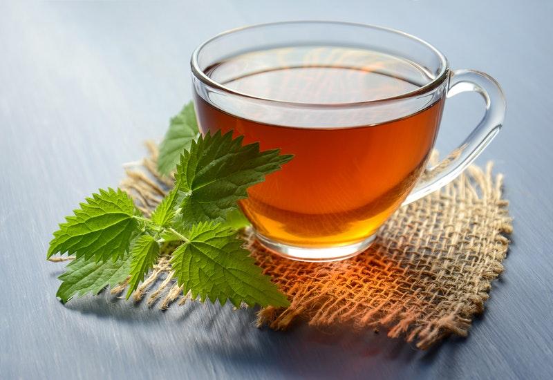 brandnetel thee zelf maken