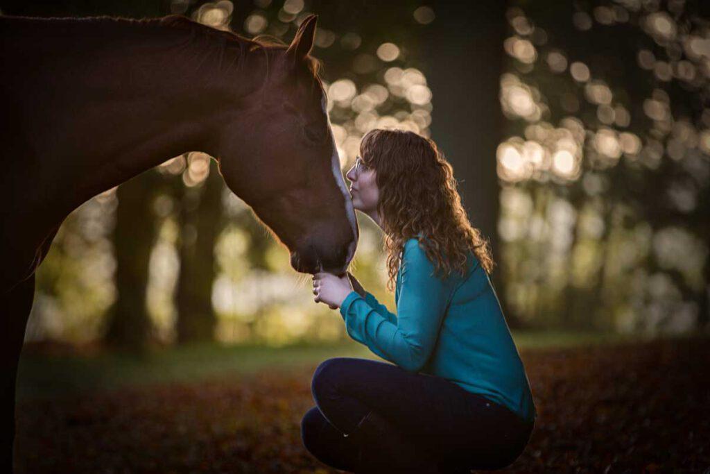 coaching met paarden paardencoach