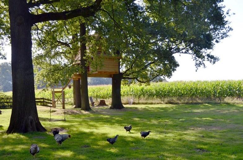 boomhut overnachting haarlo gelderland
